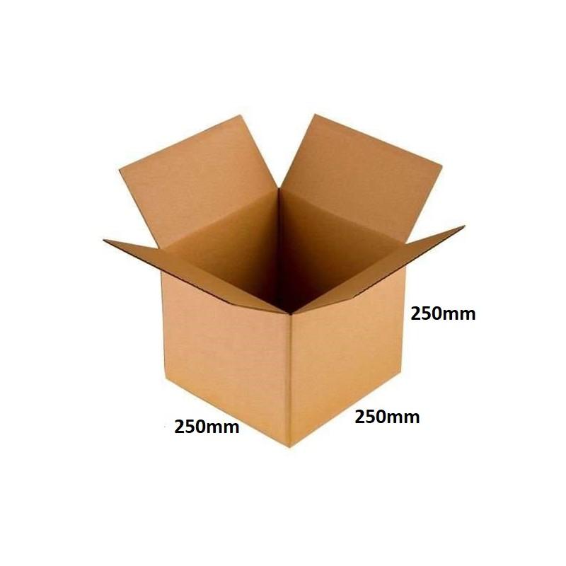 Karton klapowy 250x250x250 /140 szt./, 3w, 380g
