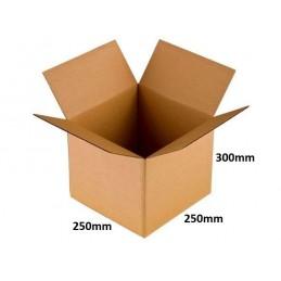Karton klapowy 250x250x300 /120 szt./, 3w, 380g
