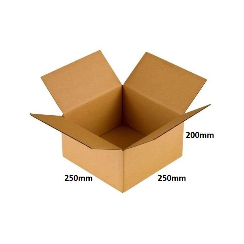 Karton klapowy 250x250x200 /160 szt./, 3w, 380g