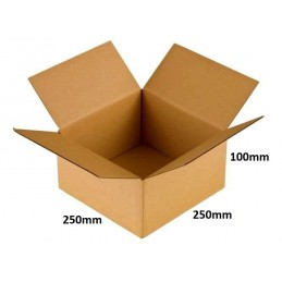 Karton klapowy 250x250x100 /200 szt./, 3w, 380g
