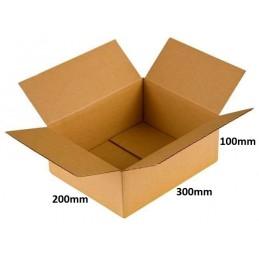 Karton klapowy 300x200x100 /280 szt./, 3w, 320g