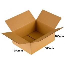Karton klapowy 300x250x100 /200 szt./, 3w, 380g